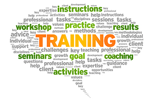 Graphic of training related words